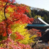 北鎌倉円覚寺の紅葉その2