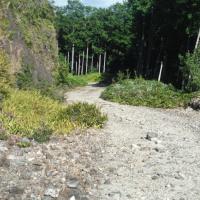 2016年締めくくりの尾鷲方面林道ツーリングでトラブル発生