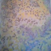 「3D パズル塗り絵」ジョアンナ・ウェブスター