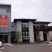 11月20日(日)の譲渡会inユニバーサルホーム浜松西店(高林)