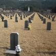 日本の法廷──戦後補償をどう判決したか。韓国・遺族会訴訟から