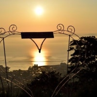 小樽 天狗山からの朝日です