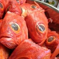 東大和ラーメン大冬樹 冷製麺販売再開!!