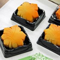 フラワーアレンジメント教室 キャスケードアレンジ
