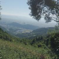 熊本紀行⑨山の神の御許し