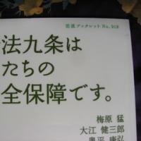 市民は平和を求め、和合し得る・金泳鎬氏・・「九条の会」の立ち位置(8・終)2014年