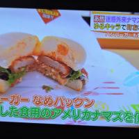 11/30 キャットフィッシュ・ナマズを食べよう