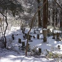 40日目 金剛山 ツツジ尾谷コース