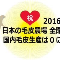 【参加者募集中】1/9(月祝)毛皮にさよなら!名古屋パレード2017&新年会だよ全員集合!