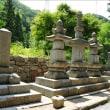 景徳院のヤマユリとアジサイ~甲州市②(回想)
