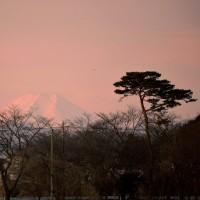 多々良から富士山が見える