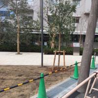 新しい帝京大学溝口病院
