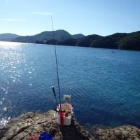 「釣り 御荘湾2日目」