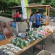 早野情報:8/13(日) 午前9時から『早野野菜マーケット』やりま~~す