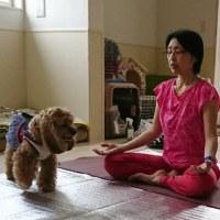 6月23日(金)…絆を深めるTタッチセミナー