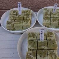 スミレの育て方2月 スミレの種蒔き2回目 ロックウールブロックを試す