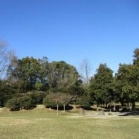 牧野が池緑地~春の動き