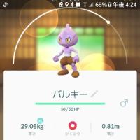 図鑑コンプ!?