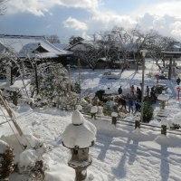 本屋親父のつぶやき 1月15日 今日は春日神社の左義長です。