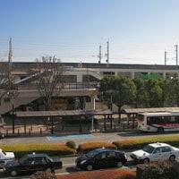 今日は暖か過ぎ! 東京都心19.5度 21年振り。