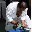 2017年前期障害者武道昇段審査併に名古屋地区拳法会審査 6月4日 名古屋市立穂波小体育館 2017Disabled Budo Grading in Nagoya.