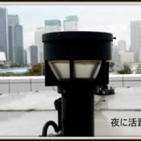 街撮り今日の一枚・photo・ギャラリ-