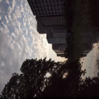 舞鶴公園 お濠端にて