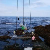札幌金漁会 第3回例会 えりもの海は・・・・・!
