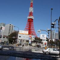 ▼東京タワー美人説の由来を訪ねて