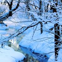 樹氷の輝きで迎えた朝
