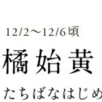 ありがとうございましたo(^o^)o