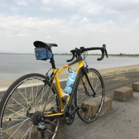 2週間ぶりの自転車