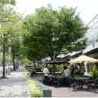 緑の並木探訪:関東・中部地方