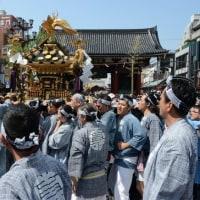 浅草三社祭・・6