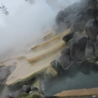 小浜温泉一泊旅行