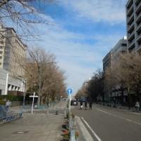 関内 日本大通り 暮れ風景