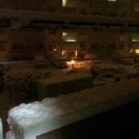 すごいぞ錦織選手!!!雪だあー!