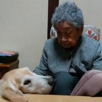 リフォーム作業中・・・・ぼく茶の間、おおばあばよろしくね