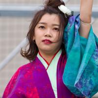 2017踊っこまつり  5月3日 本部競演場 うらじゃ踊り連楓