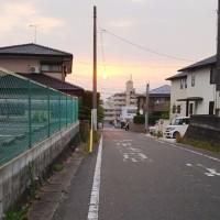 朝5時からお散歩