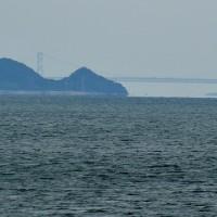 徳島へ行ってきました
