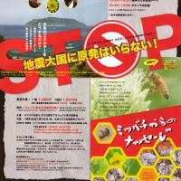 10月29日、復活!! Wミツバチ上映+鎌仲監督トーク、決定