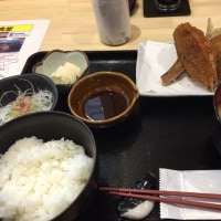 みんな大好き アジフライ定食@ふぃっしゅ  (´▽`)