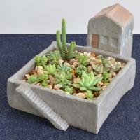 庭付き家の植木鉢