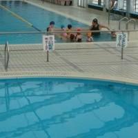 孫が泳ぎの練習。野菜の植え付け時期。大川のヤギ達。