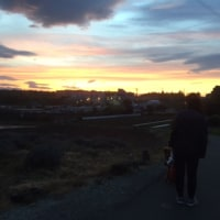 夕日を見たよ。