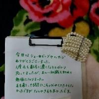 佐賀・武雄★ブライダルシェービング・花嫁さまの声★正しい知識を知れて勉強に‥‥