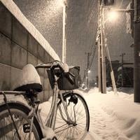 聖夜と自転車(蔵出し)