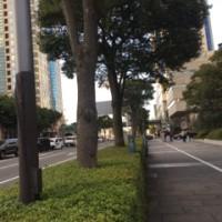 横浜  ロケ地めぐり