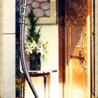 11月の鎌倉
